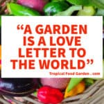 A garden is a love letter to the world quote by tropical food garden